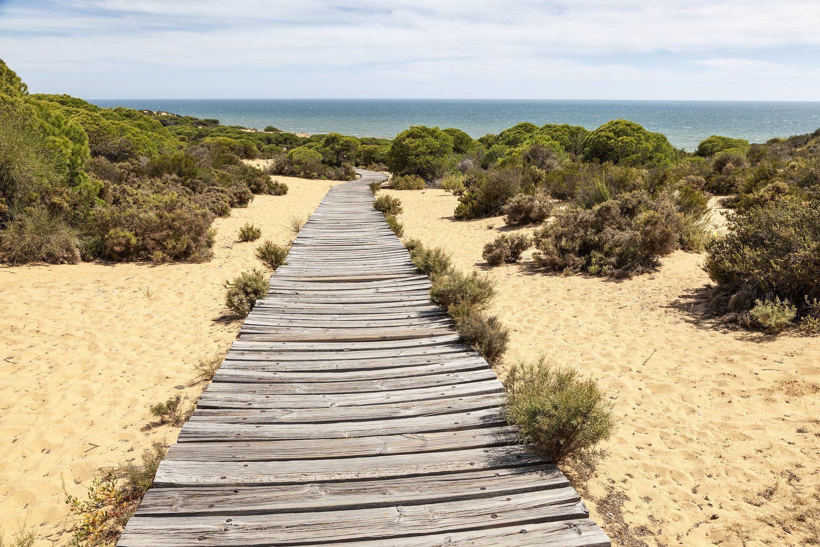 Huelva, origen de Saborea Huelva